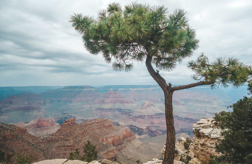 Grand Canyon – Willkommen im Wilden Westen